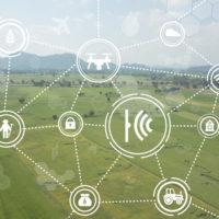 農業データ